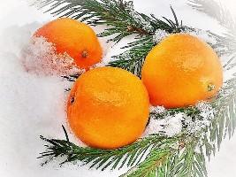 Апельсиновые бега